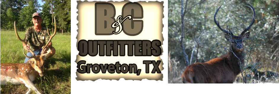 B&C Outfitters